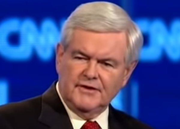 Gingrich Asks Who Are Dems To Tell Americans Who They Can Vote For?